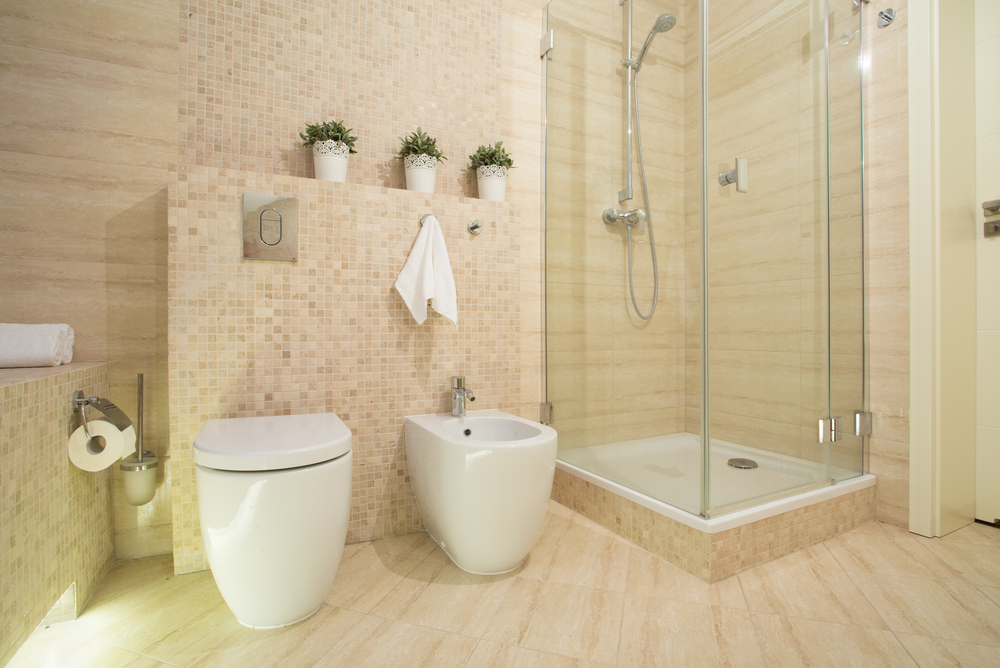 Heavy Mold Cleaning of Marble, Traverting & Slate Showers - Post